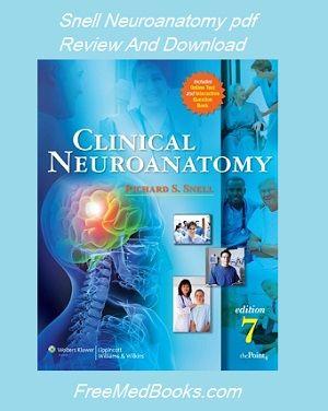 Snell neuroanatomia pdf