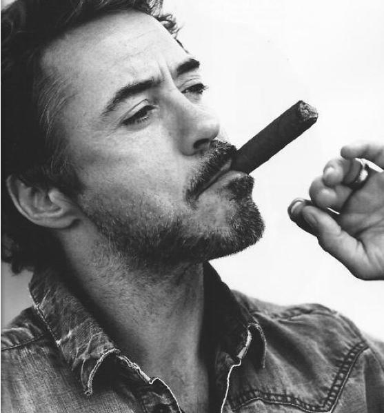 hottie Robert downey jr, Life rules, Downey