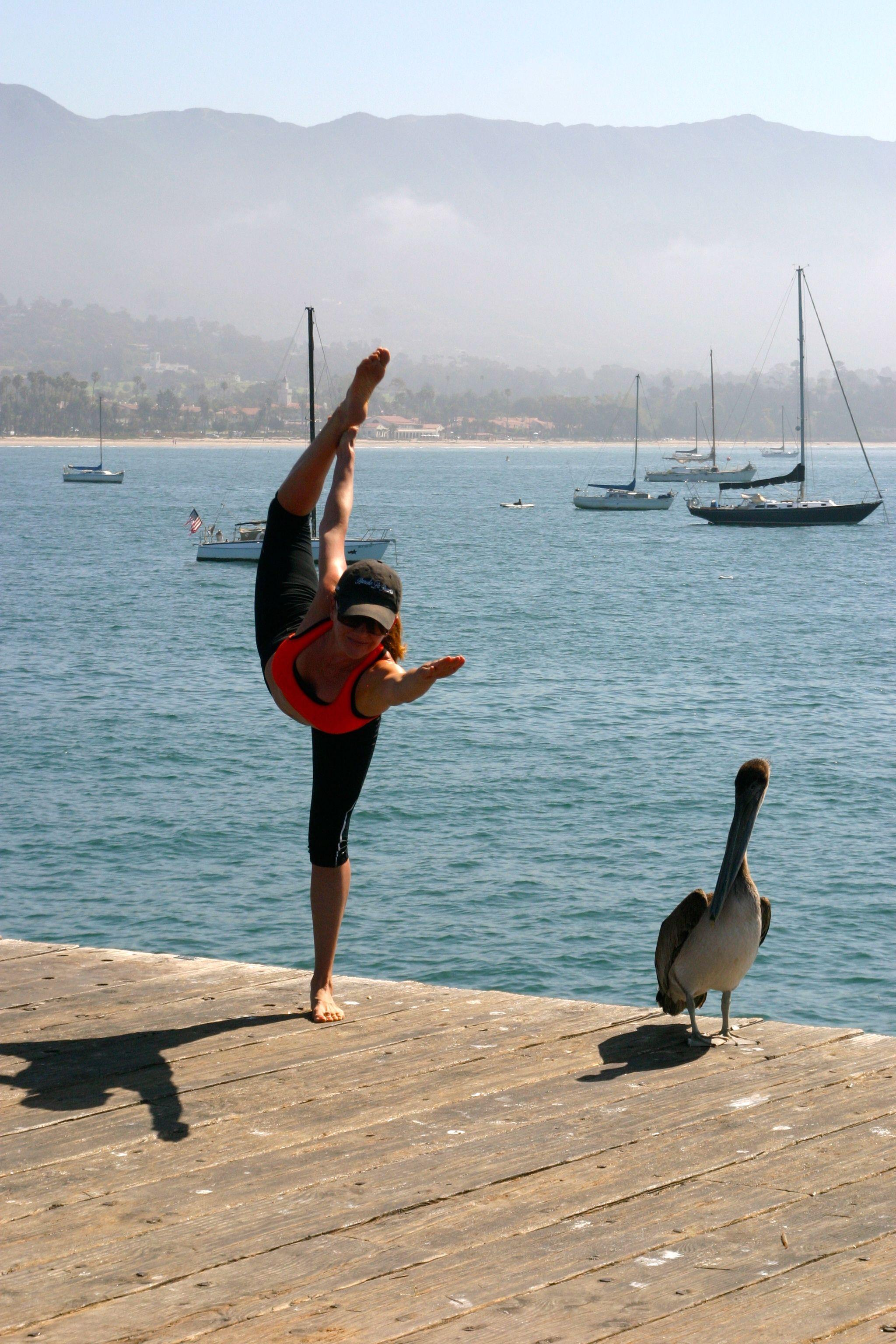 Pier Bow With Pelican Surfboard Pier Pelican