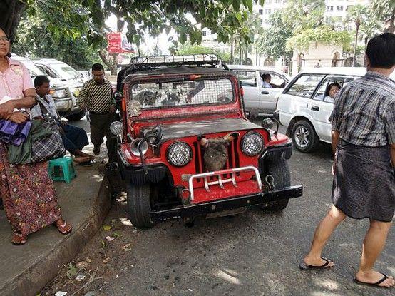 Pin Auf Myanmar Or Burma