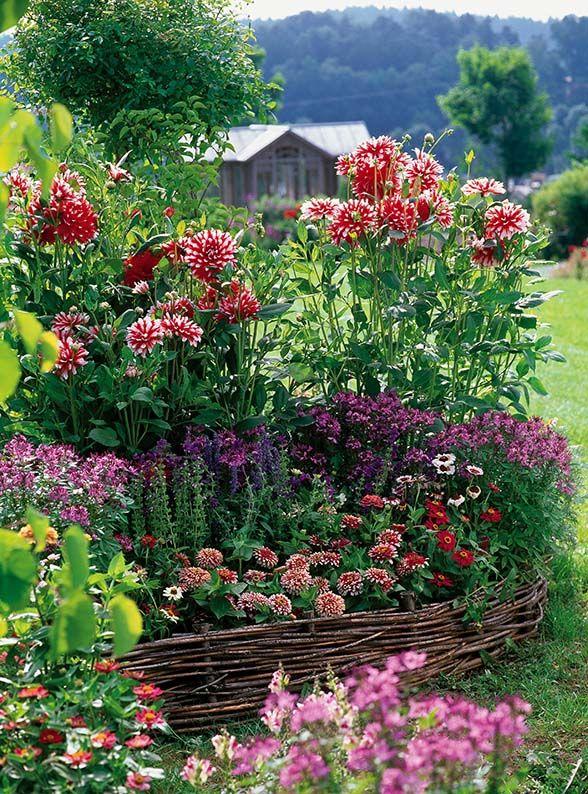 Dekor Sada Cottage Garden Dream Backyard Annual Garden