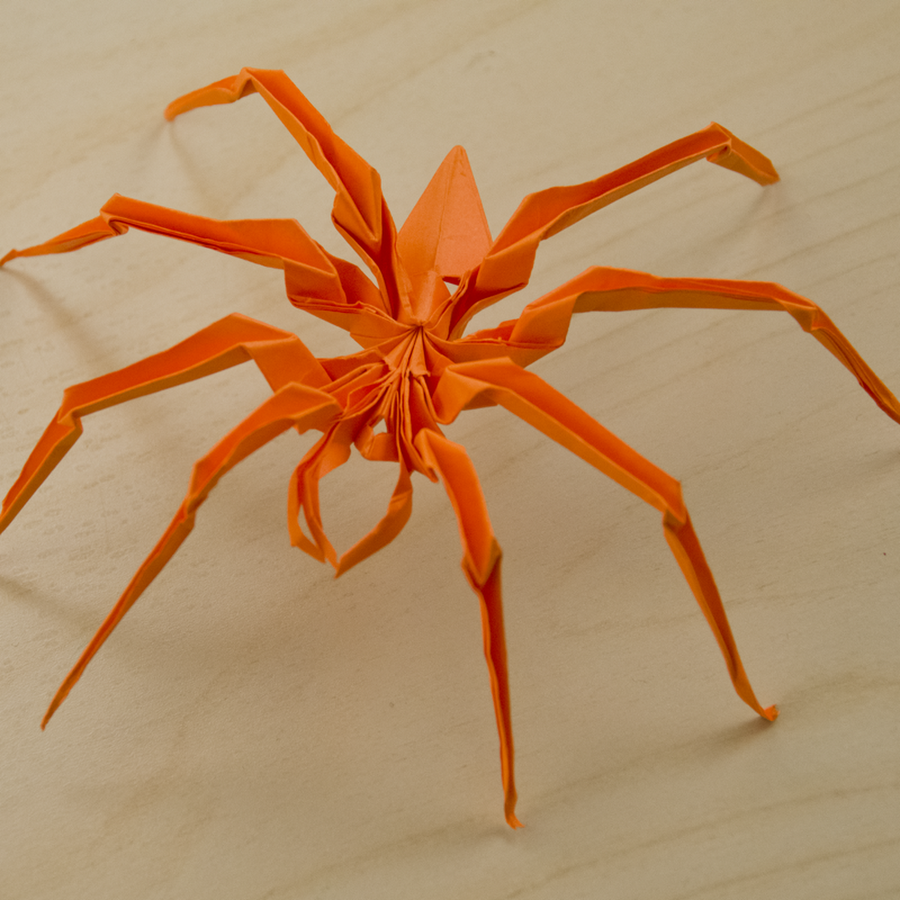 Origami Spider Folded Pinterest Origami Oragami And Paper Folding