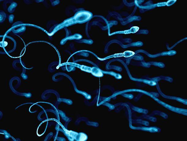 spermien diabetes
