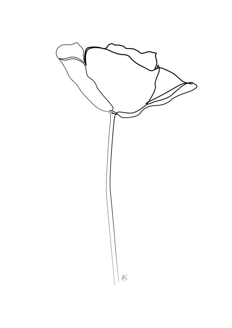 Minimal Poppy Flower Art , One Line Art , Modern Art, Black and ...