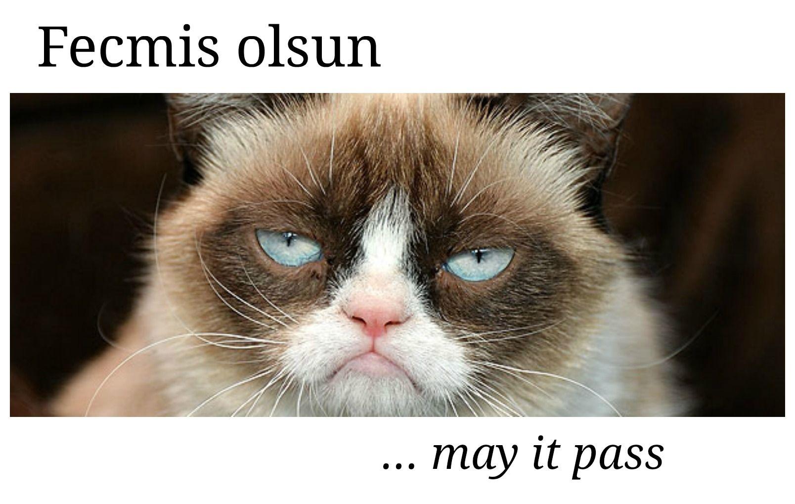 Useful Turkish language phrases everyone should learn