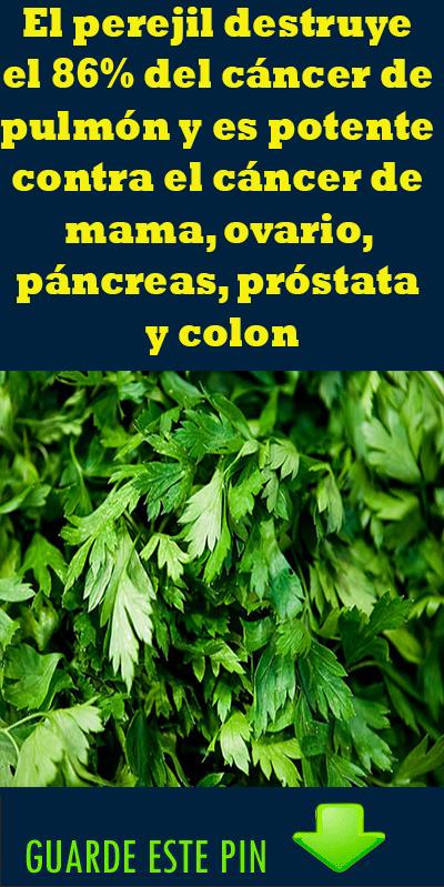 Pin On Plantas Medicinales