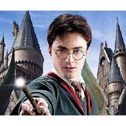 Your Hogwarts Life Sorry Girls Only Daniel Radcliffe Harry Potter Harry Potter Harry Potter Movies