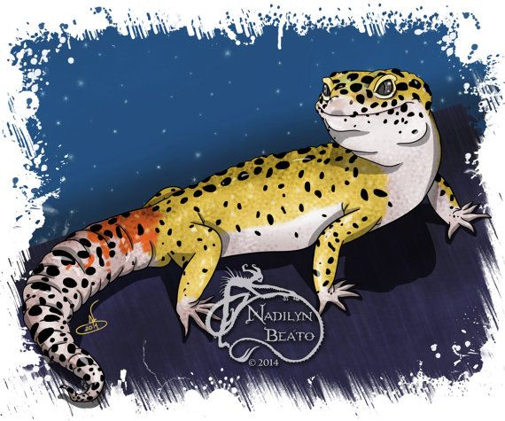 Leopard Gecko Daily Creature Print by NadilynBeatosArt on Etsy ...
