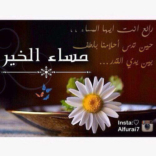 مساكم الله بالخير حبايبي مساء الهدوء و الاجواء الجميلة والامنيات الصغيرة المتطايرة نحو السماء مساكم جميل كجمال ارواحكم مساكم ورد Good Evening Islam Hadith Quotations