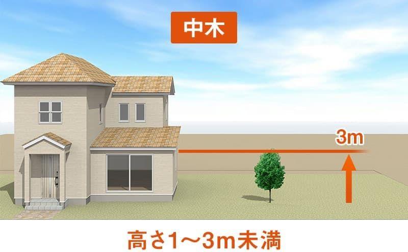 植木屋が教える 洋風の家におすすめ の庭木30選 2020 大阪 京都