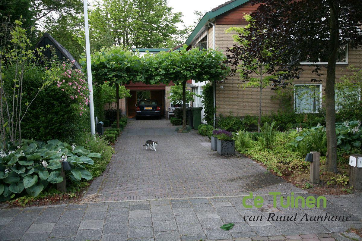 Voortuin met oprit ontwerp voorbeelden google zoeken garden pinterest gardens - Luifel ontwerp voor patio ...