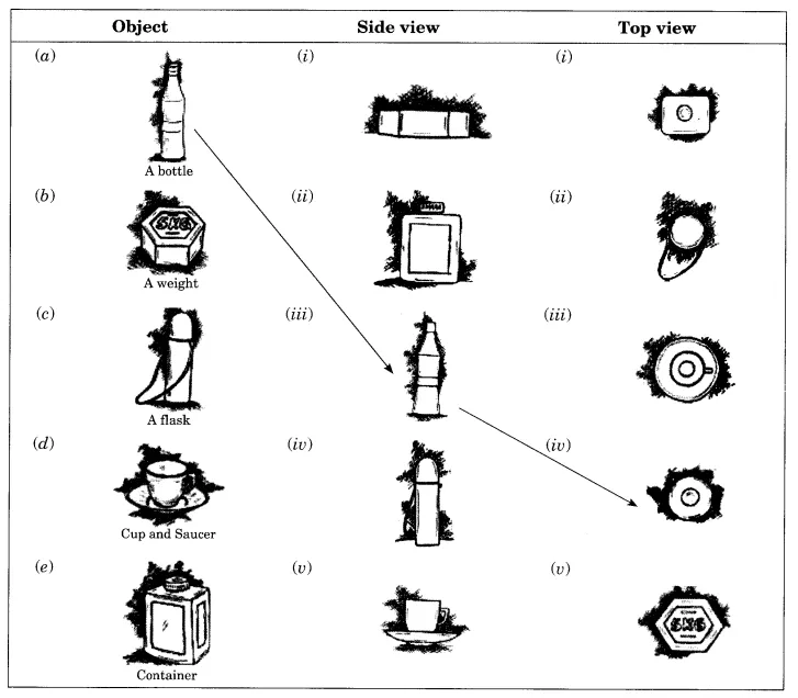 Ncert Solutions For Class 8 Maths Chapter 10 Visualising Solid Shapes Class 8