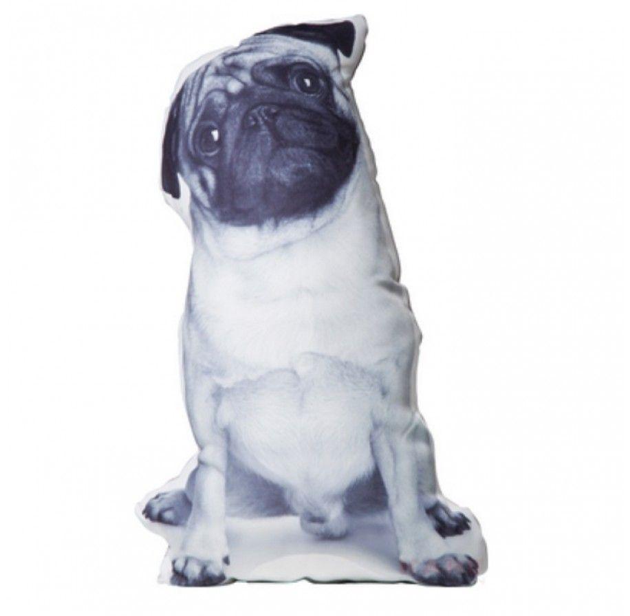 Trendhopper kussen doggy sierkussen hond trendhopper for Woonboulevard wolvega