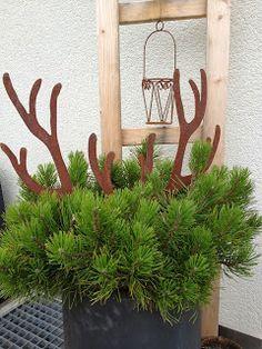 wohnbrise hirsch geweih herbst herbstdekoration weihnachten weihnachtsdekoration und. Black Bedroom Furniture Sets. Home Design Ideas