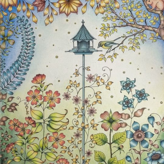 Secret Garden Double Page Find This Pin And More On Johanna Basford Colouring Books