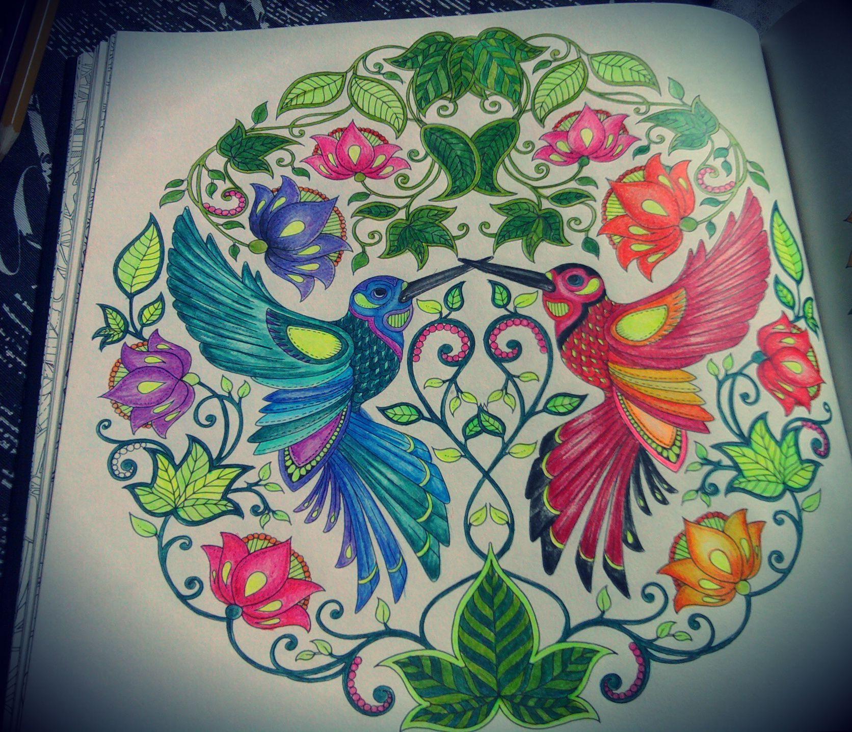 Zendoodle coloring enchanting gardens - 2 Desenho Pintado Do Livro