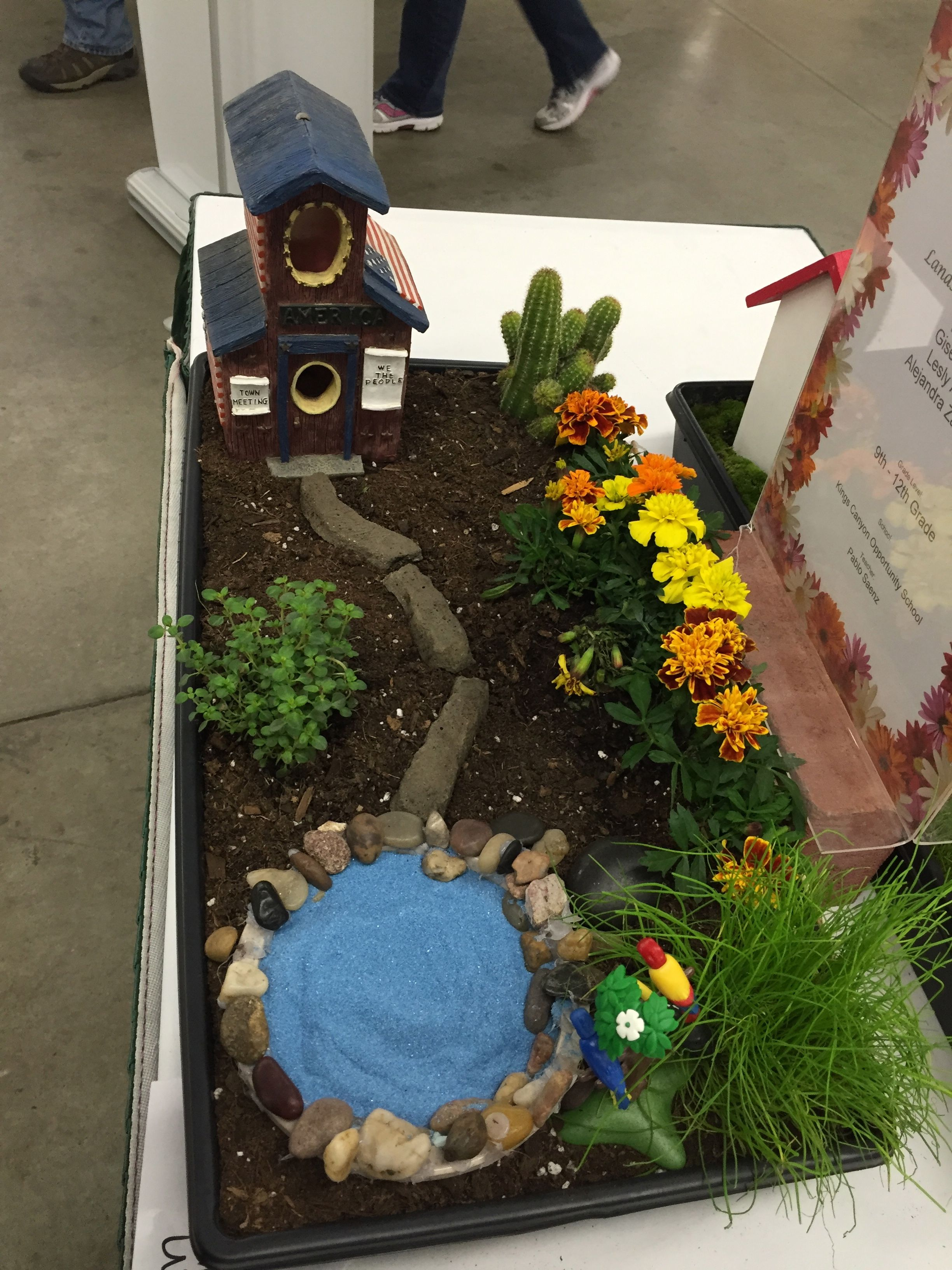 Cute Mini Landscape At The Student Competition. 150 Were On Display At The  March 2016