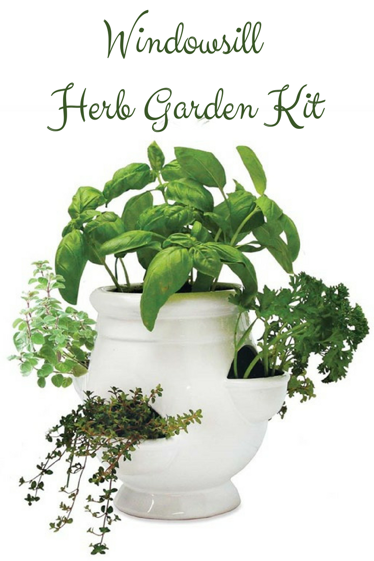 This Windowsill Herb Garden Kit Lets You Cultivate Organic Herbs Right On  Your Windowsill For An Beautiful, Delicious Kitchen Accent.