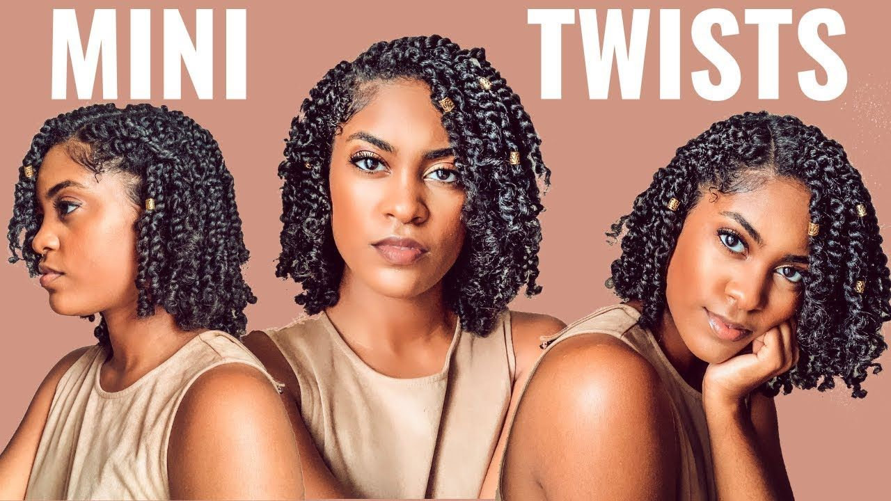Protective Style Mini Twists On Wet Natural Hair How To Youtube Natural Hair Styles Mini Twists 3c Natural Hair