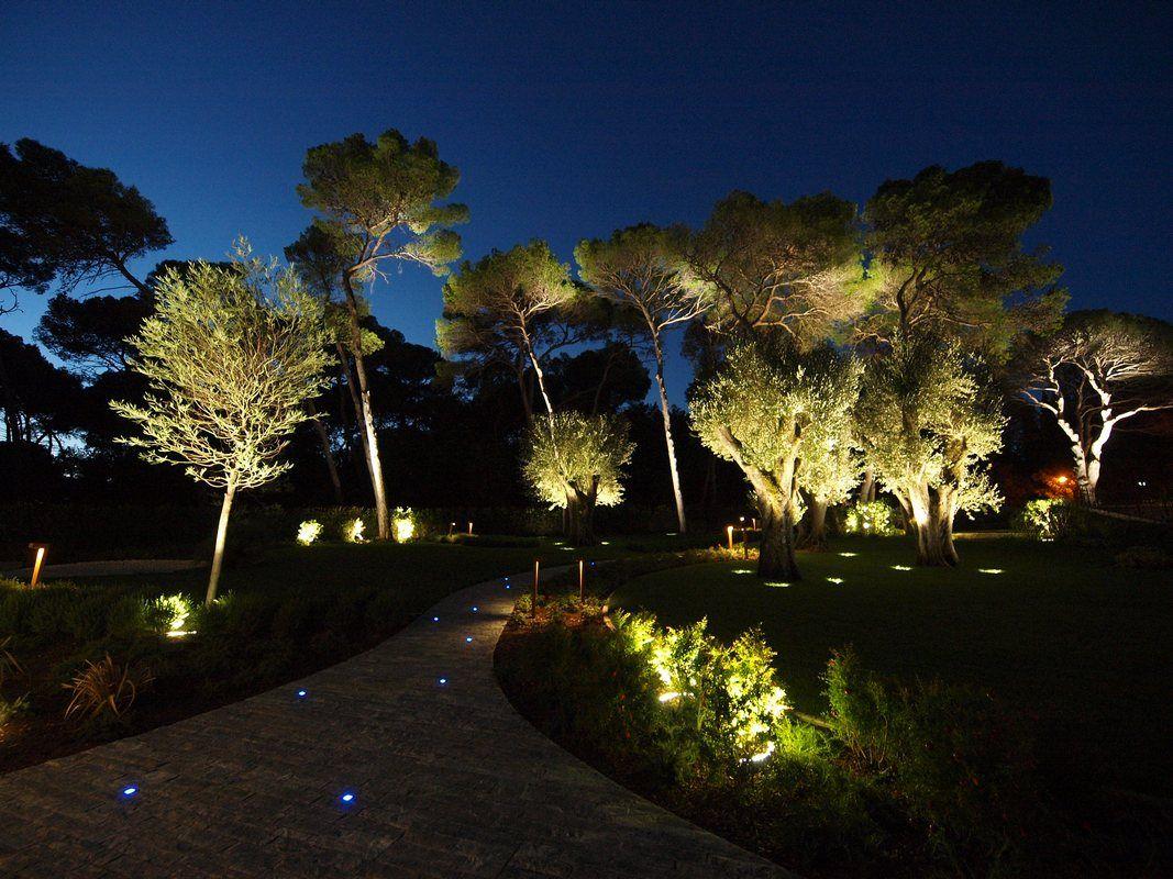 Premium Quality Led Lights Http Gel Usa Com With Images Landscape Lighting Landscape Lighting Design Outdoor Solar Lights