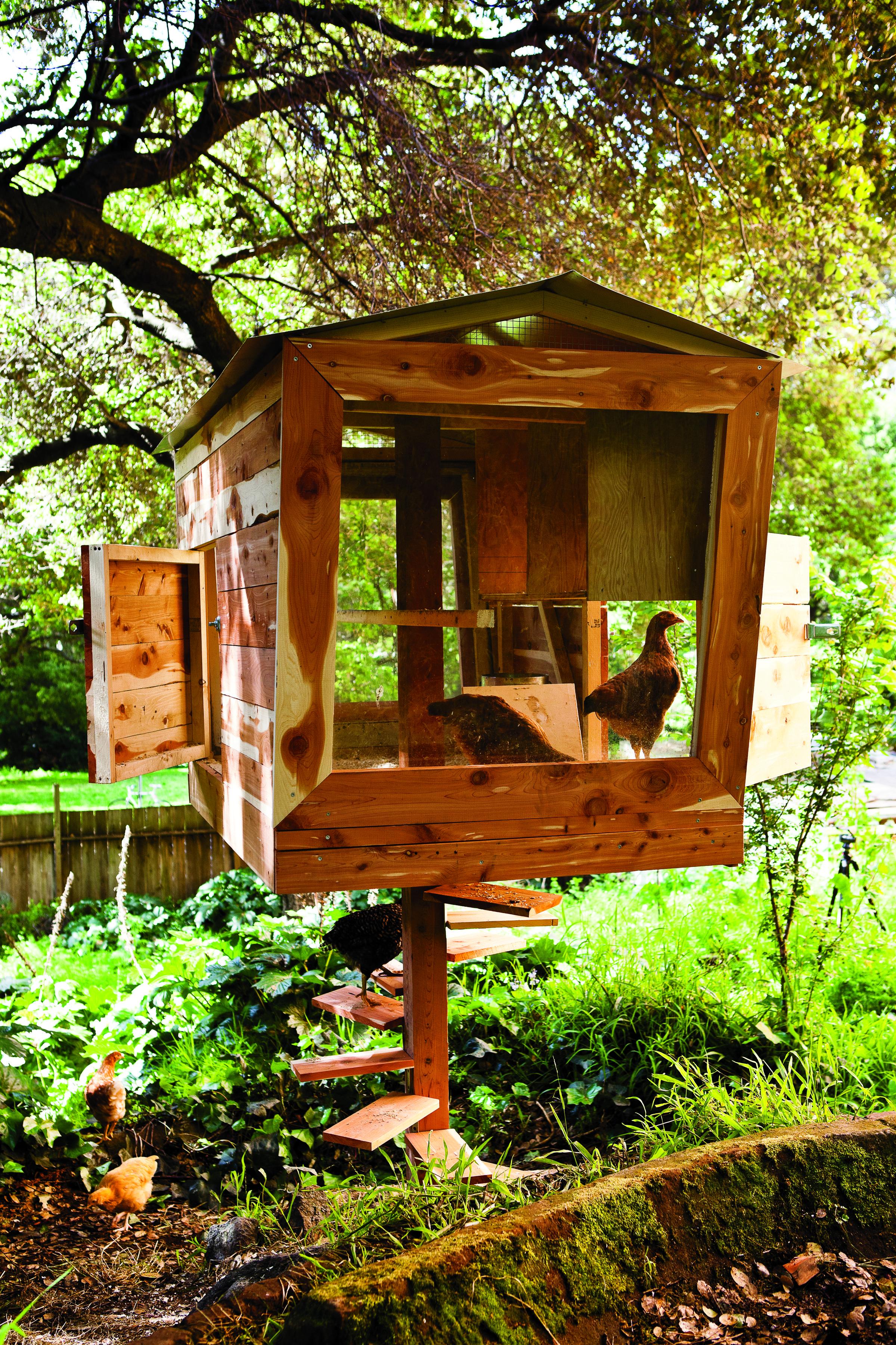 Best 8 Super Stylish Chicken Coops Backyard Design Building 400 x 300