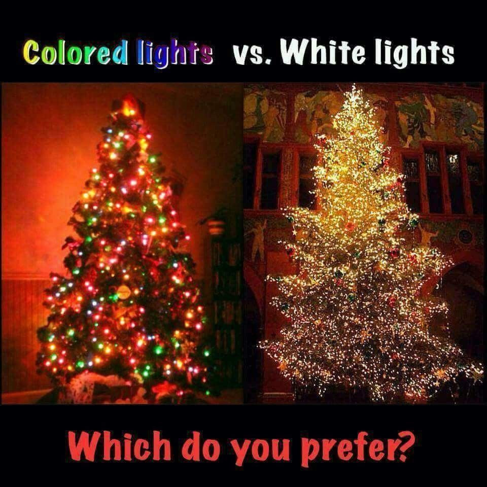 Christmas Tree Choices