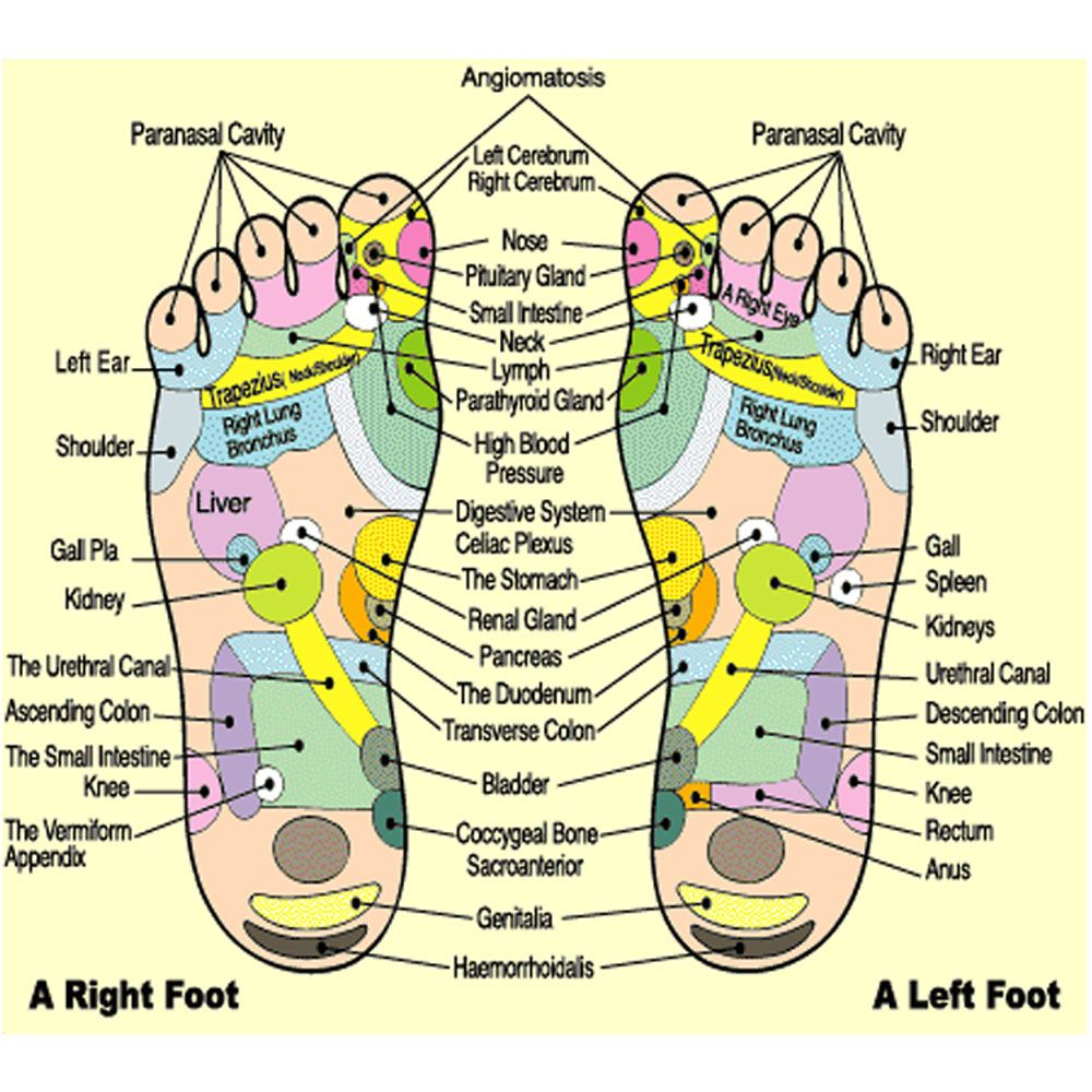 My own thoughts: Acupressure (Reflexology) Charts Collection  |Acupressure Points Chart Toes