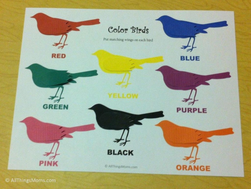 Free Printable Color Bird Matching Game
