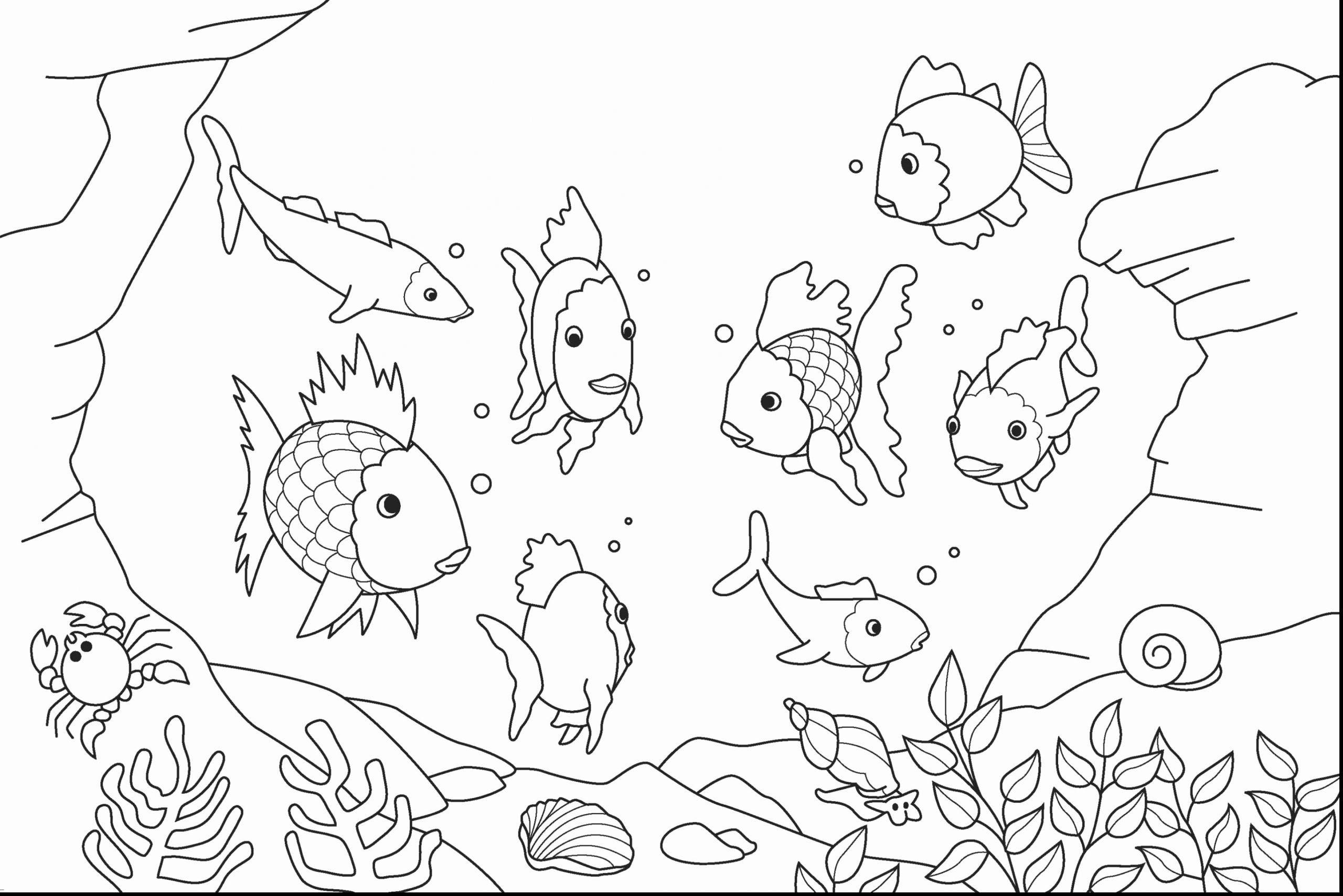 Sea Animals Coloring Page Luxury Under The Sea Fish Coloring Pages In 2020 Fish Coloring Page Animal Coloring Pages Unicorn Coloring Pages