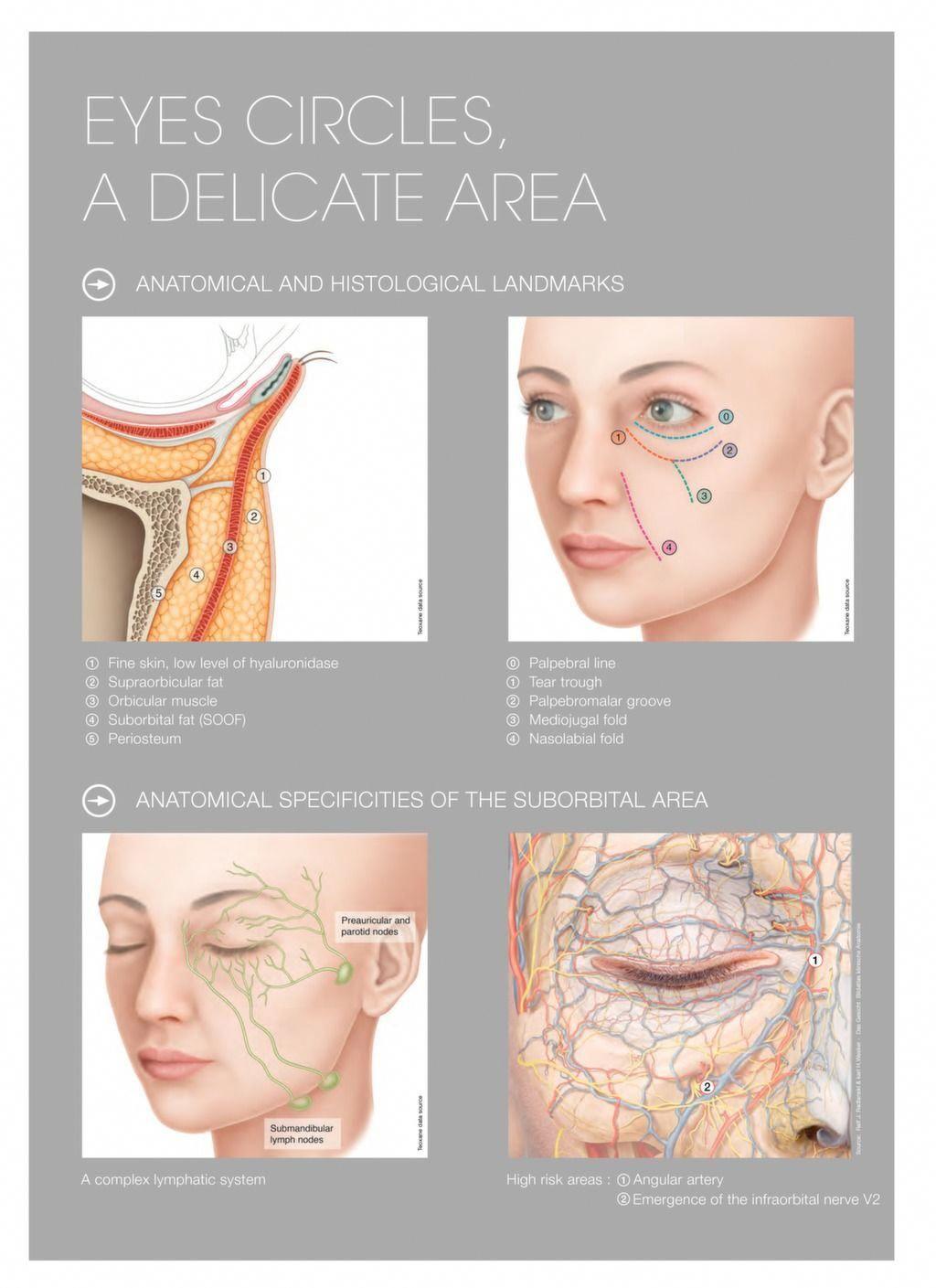 Teosyal ® PureSense Redensity II | Aesthetics | Botox