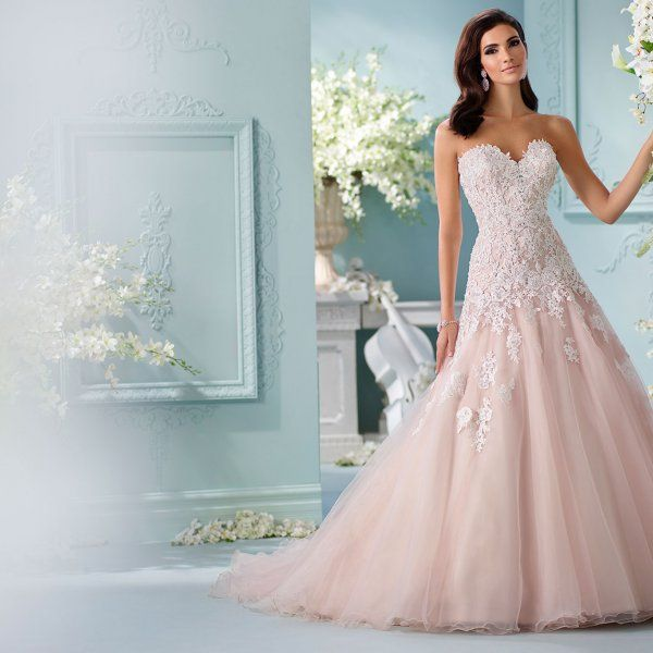 White Carpet-Ready Wedding Gowns & Accessories   Gowns, Wedding ...