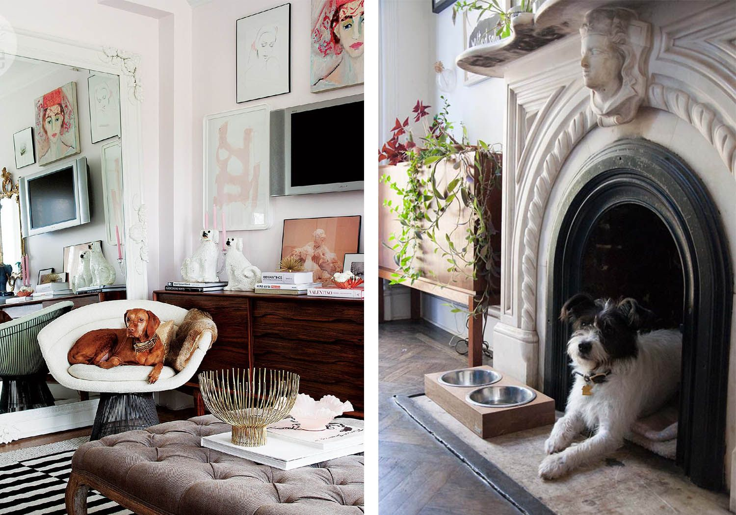 11 Ways to Make Room for Your Pets at Home Pet friendly