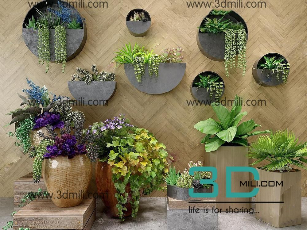 302 Plant 3dsmax Model Free Download Plants Model Free Download