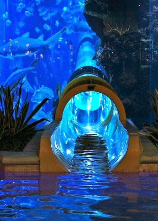 The Best Water Slides In Vegas Las Is Known For Its Trendy Hotels