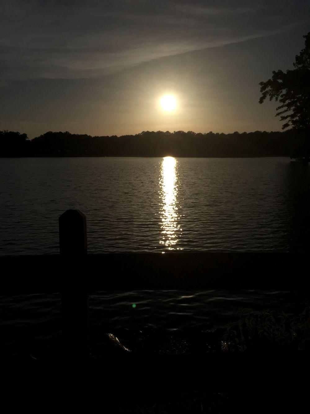 Lake robin
