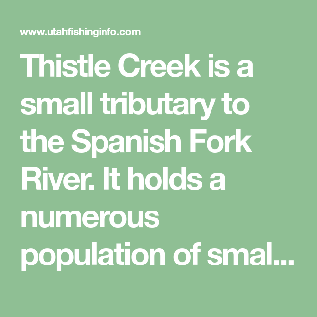 Thistle Creek Is A Small Tributary To The Spanish Fork River It