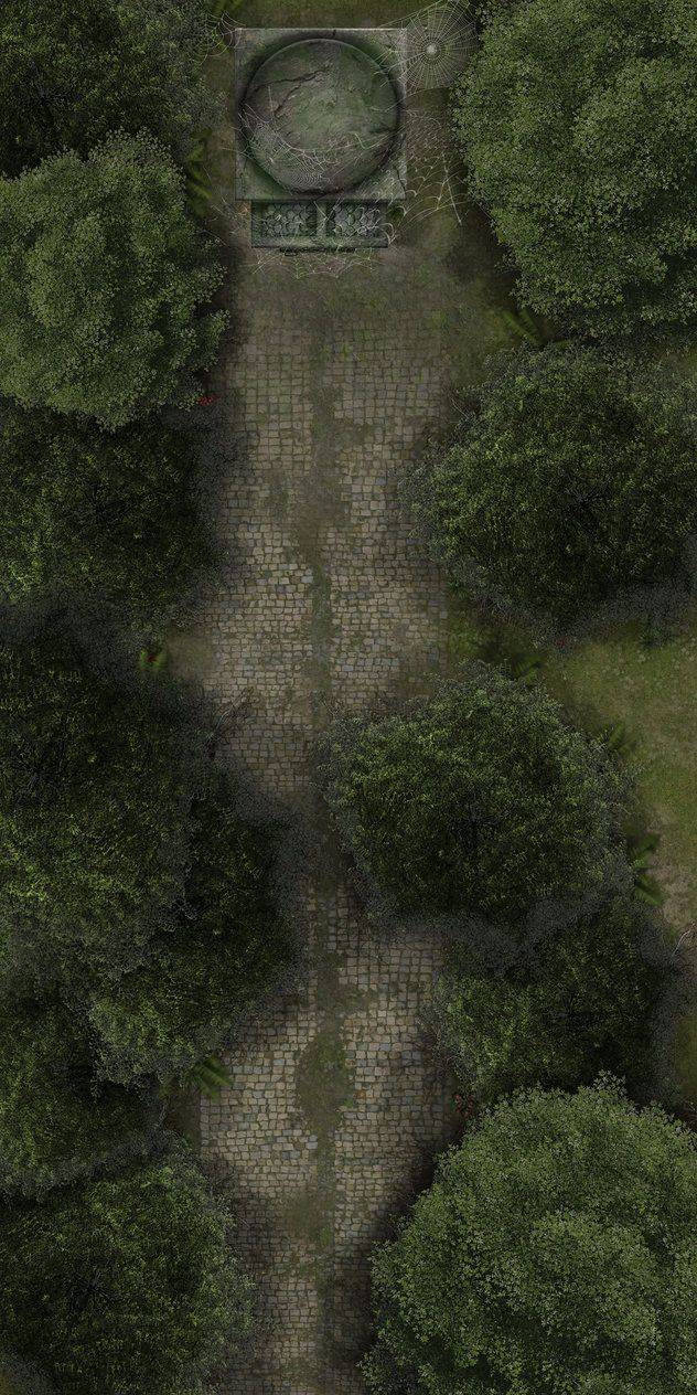 I Made This Map As A Hideout Place For Nezznar The Black Spider Whom Is The Main Enemy In The D D 5e Lost Mines Of Pha Forest Map Fantasy Map Fantasy