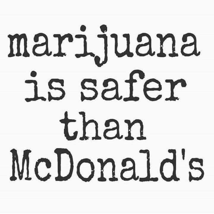 True fact #Quotes …