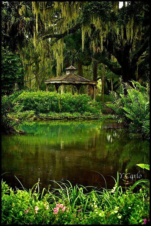 Washington Oaks Gardens State Park Palm Coast Fl Shades Of Green By