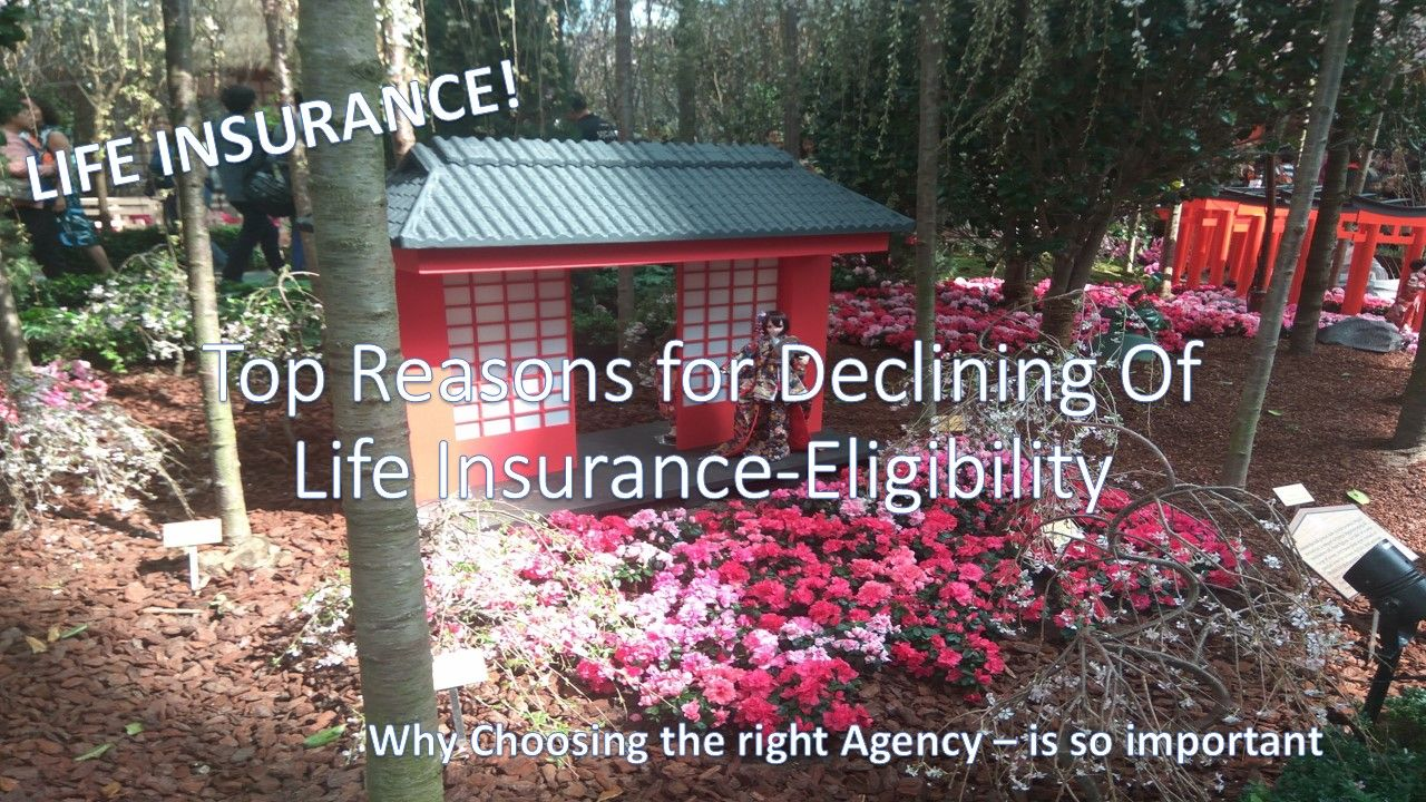 Life insurance for ages 76 to 80 life insurance outdoor