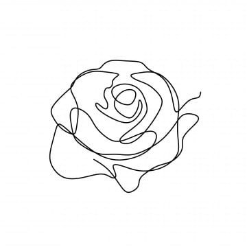 Black And White Line Drawing Flowers Flower Line Drawing Plant Graffiti Hand Drawn Line Drawing Fashion Line Drawing Fashion Pattern Flower Line Drawing Png Flower Line Drawings Line Art Flowers