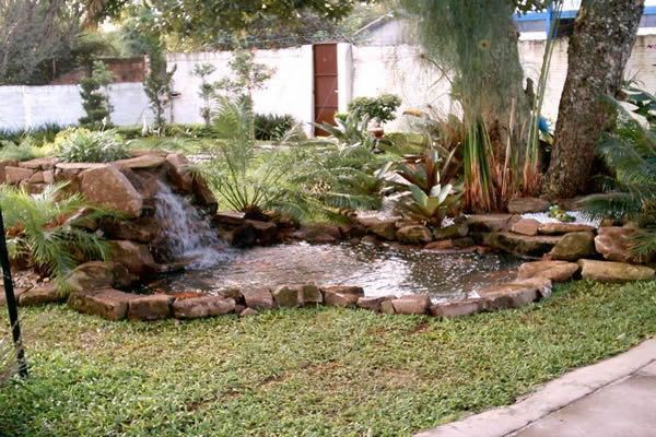 Peixe  Vida Lagos Ornamentais, Fontes, Peixes e Aquários - estanques artificiales