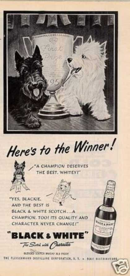 Vintage Animal Advertisements Of The 1950s Page 7 Black And White Dog Scottie Dog Scottie