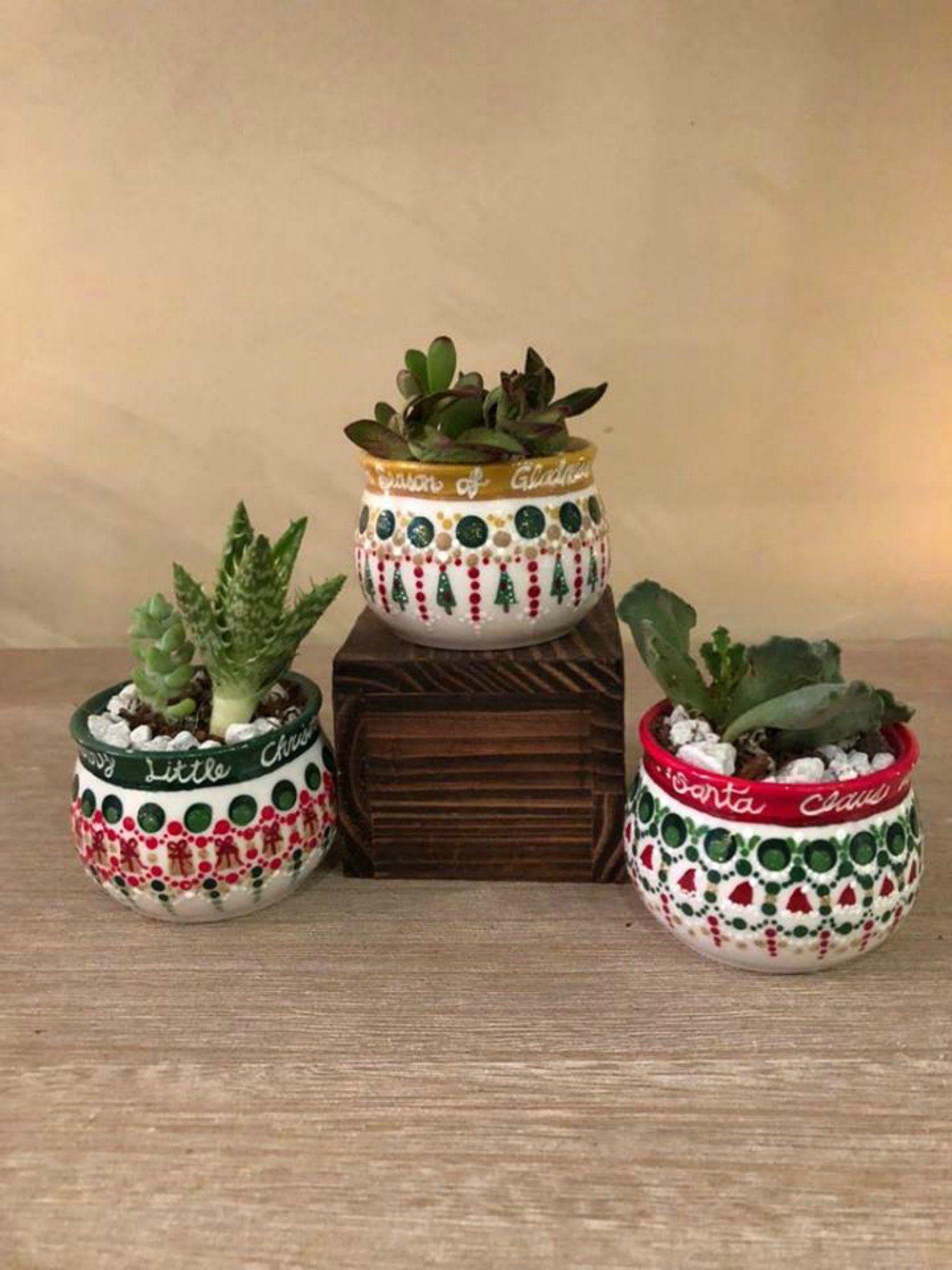 Christmas Succulent Planters.Succulent Planters For Christmas Succulent Pot Christmas
