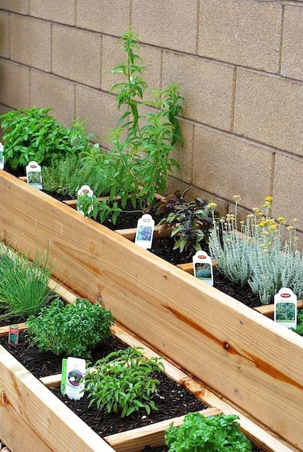 45 Best Backyard Vegetable Garden Designs Ideas Home Garden Small Patio Garden Raised Bed Herb Garden Backyard Vegetable Gardens