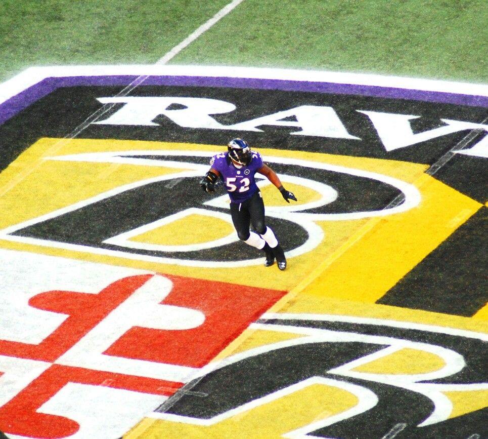 Ray Lewis Ray lewis, Baltimore ravens, Sports