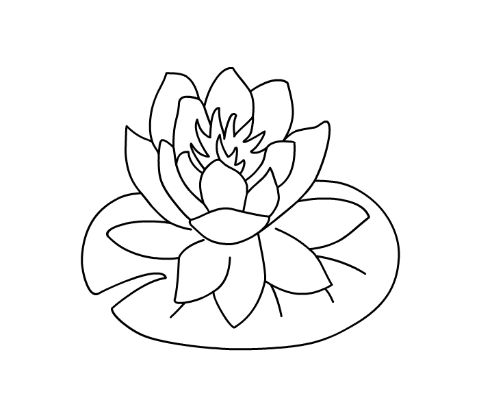flower Page Printable Coloring Sheets | Hibiscus Flower Coloring ...