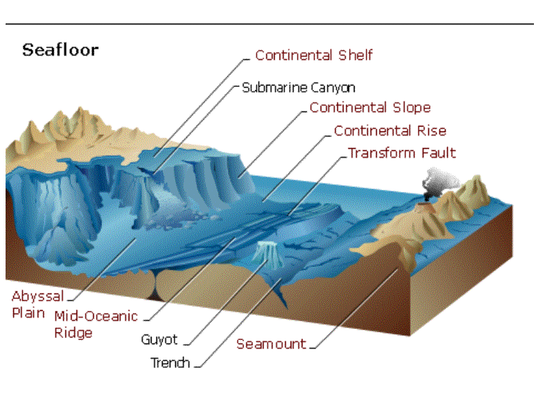 Image Result For Physiographic Chart Of The Seafloor Woksheet Geografia