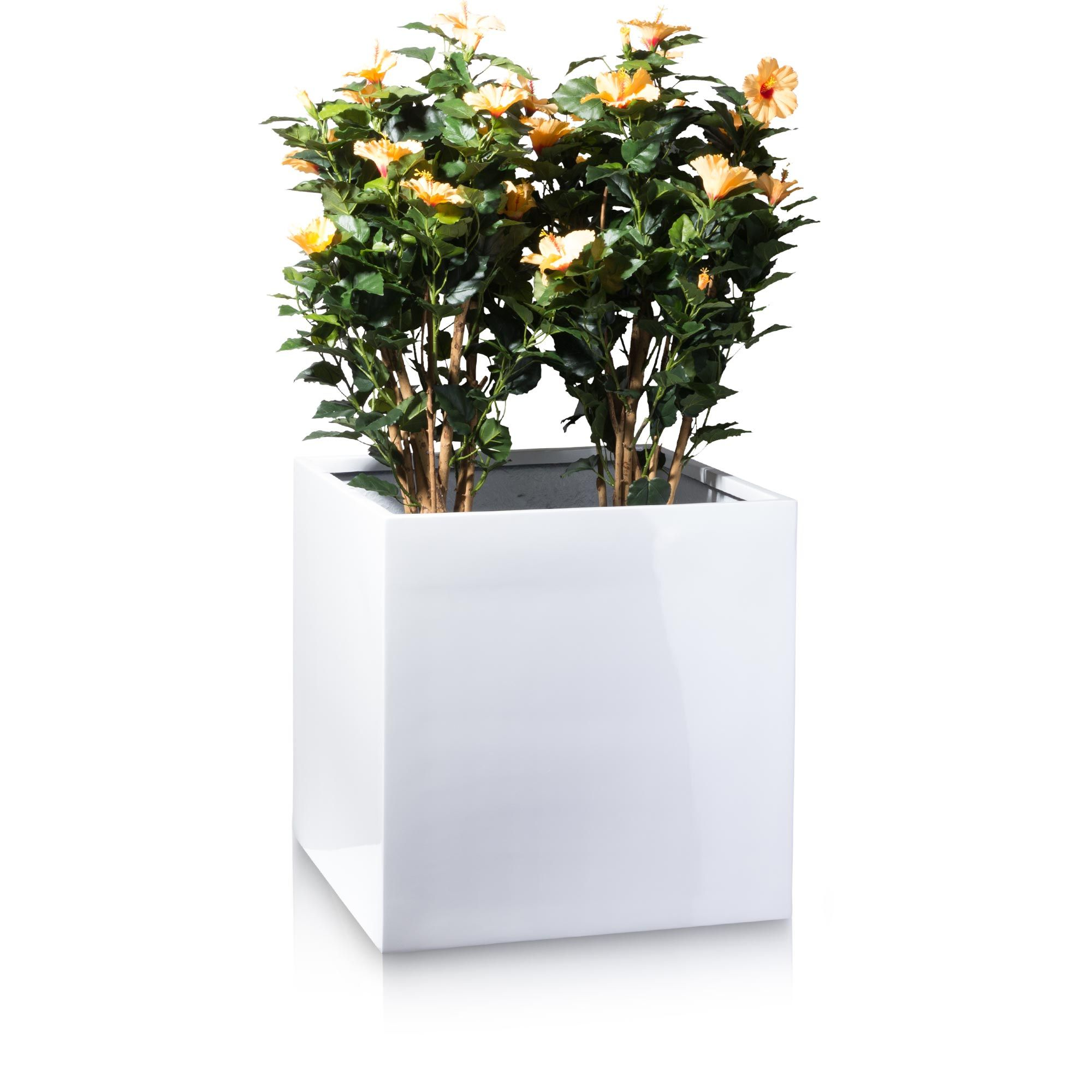 The fibreglass plant pot CUBO 60 comes