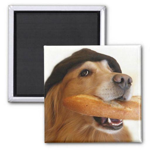 Golden Retriever French Bread Magnet Zazzle Com Dogs Golden Retriever French Dogs Dog Gifts